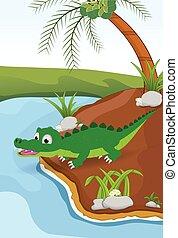 accanto, coccodrillo, fiume, cartone animato