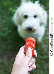 accarezzi proprietario, addestramento, cane, usando, clicker