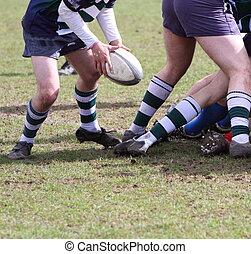 acción, rugby