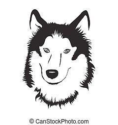 acción, vector, husky., illustration., siberiano