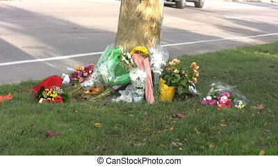 """Flowers lay against a tree by the side of a busy street following a fatal auto accident serving as a reminder for all of us to """"slow down"""" and drive safe!"""