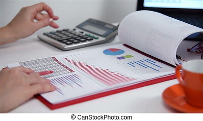 Accountant Woman Calculates Earnings