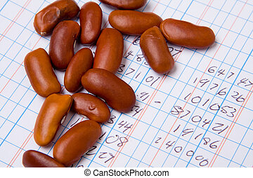 Accounting Ledger Book Numbers Pile Bean Counter