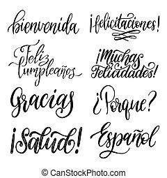 accueil, pourquoi, remercier, expressions, vous, etc., ensemble, vecteur, manuscrit, calligraphie, espagnol, arrière-plan., translated, blanc