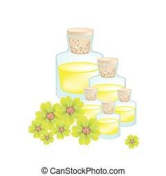 aceite, achillea, amarillo, o, milenrama, millefolium,...
