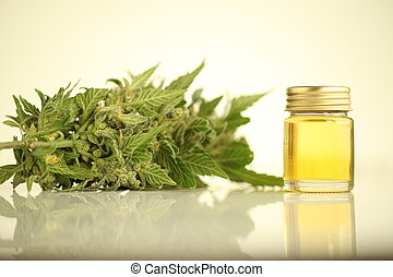 aceite, médico, cannabis, cbd, producto