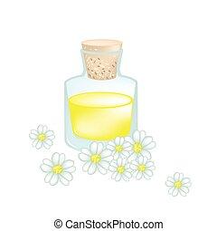 aceite, milenrama, florecer, flores, blanco, esencial