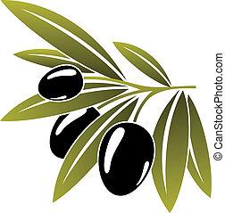 aceitunas, maduro, verde, negro, ramita, frondoso