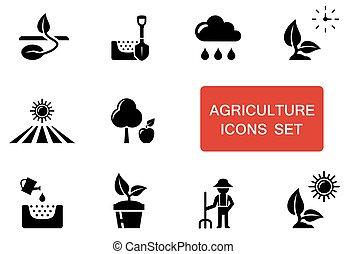 acento, jogo, agricultura, vermelho