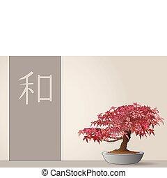 acero, giapponese, bonsai