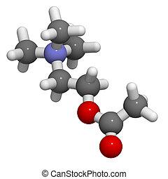 Acetylcholine (ACh) neurotransmitter, molecular model. Atoms...