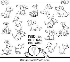 achar, dois, idêntico, cão, quadros, tinja livro