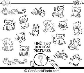 achar, dois, idêntico, gatos, tinja livro