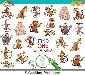achar, um um tipo, com, macaco, caráteres