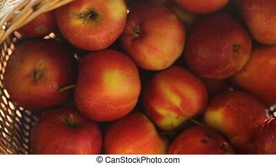 achat, choisir, magasin, pommes