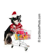 achats, chien, noël