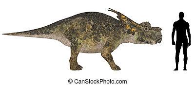 Achelousaurus Size Comparison