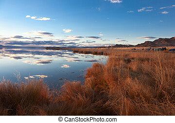 achitnoor, mongolian, 湖