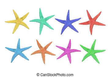 acht, kleurrijke, zeester, op, een, witte achtergrond