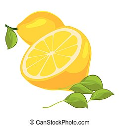 achtergrond, bladeren, vrijstaand, citroenen, fris, witte