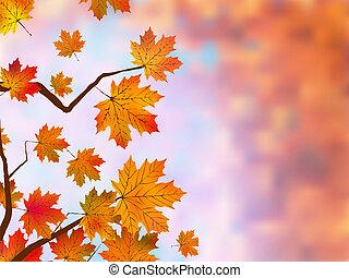 achtergrond., esdoorn, herfstachtig