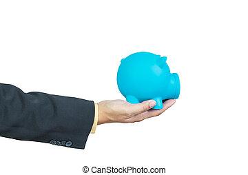 achtergrond, hand, piggy, vasthouden, zakenman, witte , bank
