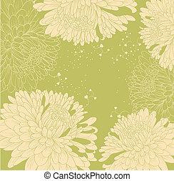 achtergrond, met, chrysanthemums, en