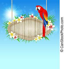 achtergrond, met, rood, papegaai