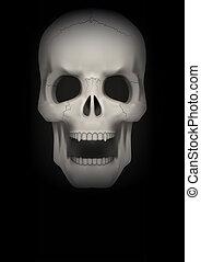 achtergrond, open, donker, menselijke schedel, mouth.