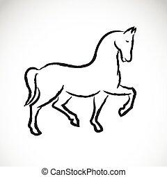 achtergrond., paarde, vector, witte