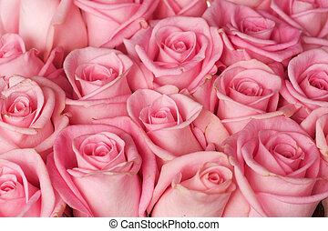 achtergrond, rozen