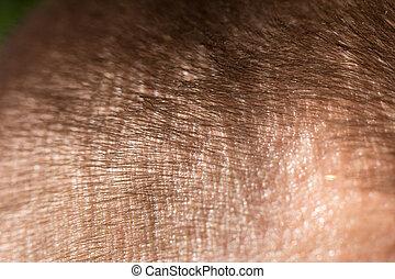 achtergrond, van, de, hair., macro
