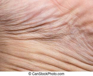 achtergrond, van, de, menselijk, skin., macro