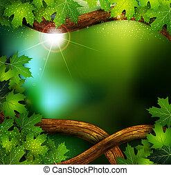 achtergrond, van, de, mystiek, mysterieus, bos, met, bomen...