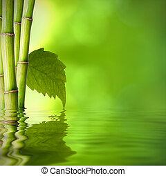 achtergrond, van, natuurlijke , spa, met, plant, en, reflectie, in het water