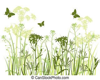 achtergrond, vlinder, gras, groene