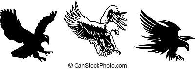 achtergrond, vrijstaand, witte , adelaar ikoon
