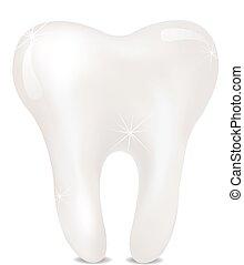 achtergrond., witte , vrijstaand, tand