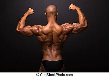 achterk bezichtiging, van, amerikaans mannetje afro, bodybuilder, het poseren
