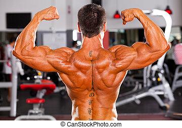 achterk bezichtiging, van, mannelijke , bodybuilder