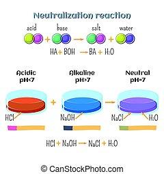 Acid-base, neutralization reaction of hydrochloric acid and...