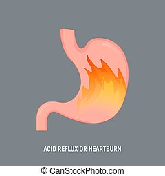 Acid stomach burn gastritis icon. GERD acidity stomach reflux heartburn ache.