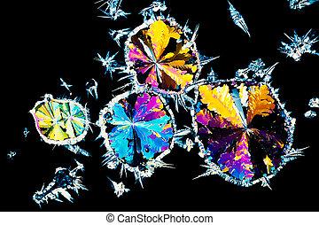 acide citrique, cristaux, dans, lumière polarisée