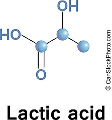 acide, lactique, lactate