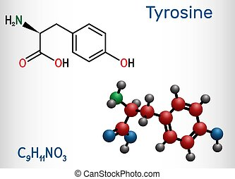 acide, thyroxine, modèle, formule, rôle, tyr, molecule., ...