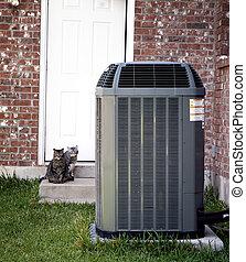 acondicionador, gatos, dos, aire