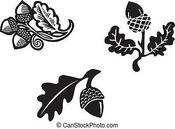 Acorn graphic illustration, vector