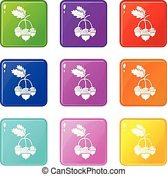 Acorn icons set 9 color collection
