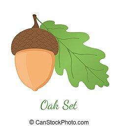 Acorn, leaf, oak nut, seed. Cartoon flat style. Vector illustration