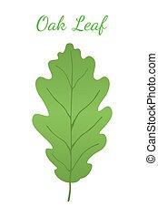 Acorn leaf, oak nut, seed. Cartoon flat style. Vector illustration
